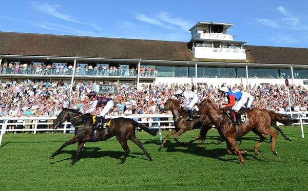 2 for 1 Winning Raceday Package - Special Offer Amazing Experience 1
