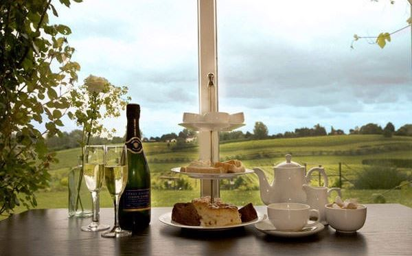 Afternoon Tea and Vineyard Tour with Wine Tasting For Two Amazing Experience 2