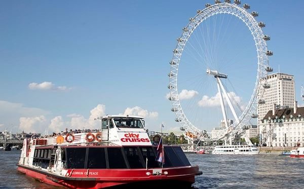 Family Thames Sightseeing Cruise Three Day Rover Pass Special Offer Amazing Experience 2