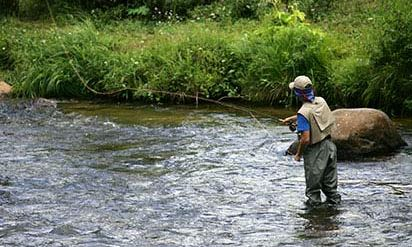 Fly Fishing Amazing Experience 1