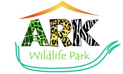 Junior Keeper for the Day at Ark Wildlife Park Amazing Experience 1
