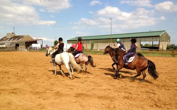 One Hour Horse Riding Experience - UK Wide Amazing Experience 1