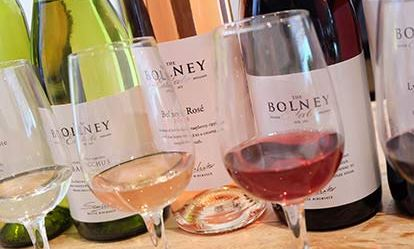 Tour and Tasting at Bolney Estate Amazing Experience 1