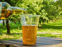 2 for 1 Cider Tasting for Two at Dorset Nectar Experience Day