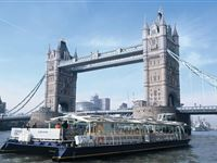 Bateaux Thames Lunch Cruise for One