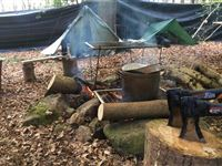Bushcraft Experience with Wild Survivor