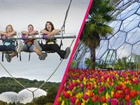 Eden Project Entry with Zip Wire Giant Swing and Big Air for Two