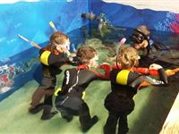 Family Snorkelling and Entry at Skegness Aquarium Experience Day
