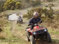 Junior Quad Bike Thrill