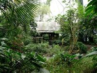 Rainforest Biome Private Tour for Two at The Eden Project