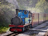 Steam and Diesel Train Driving Course with Lunch at Kirklees Light Railway