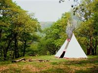 Two Night Tipi Eco Retreat for Two