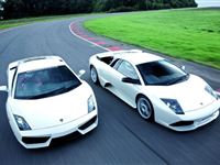 Ultimate Lamborghini Driving Thrill with Passenger Ride