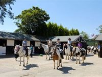 Western Adventure Day - Special Offer Experience Day