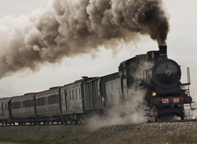 steam train trip experiences